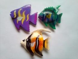 3 Fish - Tourism