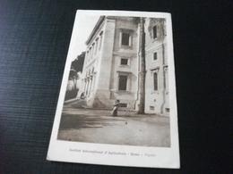 STORIA POSTALE  FRANCOBOLLO ITALIA REGNO S. FRANCESCO  INSTITUT INTERNATIONAL D'AGRICOLTURE ROME ROMA FACCIATA - Andere Monumente & Gebäude