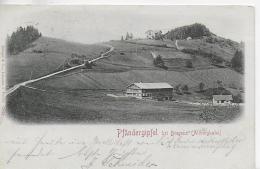 AK 0023  Pfändergipfel Bei Bregenz Am Bodensee - Verlag Stengel & Co Um 1901 - Bregenz