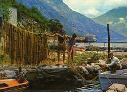 Montenegro. Morinj. - Les Pêcheurs / Fishermans / Fischers - Montenegro