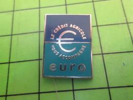 1218c Pin's Pins / Rare Et De Belle Qualité / ARTHUS-BERTRAND : PASSAGE A L'EURO LE CREDIT AGRICOLE VOUS ACCOMPAGNE - Arthus Bertrand