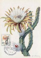 D34938 CARTE MAXIMUM CARD 1960 MONACO - CACTUS SELENICEREUS CP ORIGINAL - Cactusses