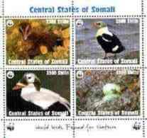 27623 Somalia (Central States) 1998 WWF - Birds Sheetlet Containing Set Of 4 Unmounted Mint - Somalia (1960-...)