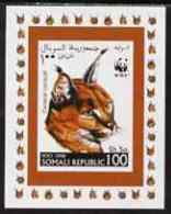 67238 Somalia 1998 WWF - Caracal Lynx 100sh Imperf Individual De-luxe Sheetlet, U/m (cats Animals) - Somalia (1960-...)