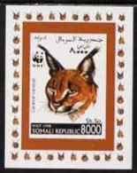 67241 Somalia 1998 WWF - Caracal Lynx 8000sh Imperf Individual De-luxe Sheetlet, Unmounted Mint (animals Cats) - Somalia (1960-...)