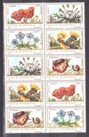 Roumanie - 1983 - N° 3470 à 3474 X 2 (bloc De 10) - Flore - 1948-.... Républiques