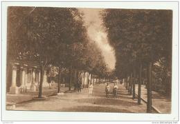 GRADO - VIALE DANTE ALIGHIERI 1925 VIAGGIATA FP - Gorizia