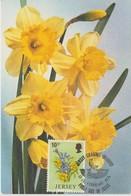 Jersey Carte Maximum 1974 Fleurs Jonquilles 92 - Jersey