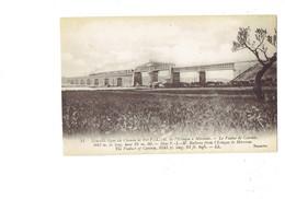 Cpa - 13 - Martigues. Le Viaduc De Carontes , Nouvelle Ligne De Chemin De Fer P L M De L'Estaque à Miramas TRAIN - Martigues