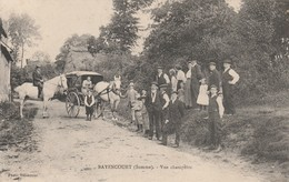 80 - BAYENCOURT (Somme) - Vue Champêtre. - Animée - Autres Communes