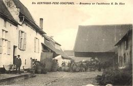 Sainte Gertrudis-Pede-Schepdael (Dilbeek).BRASSERIE. Brouwery En Pachthoeve N. De Nève. - Dilbeek