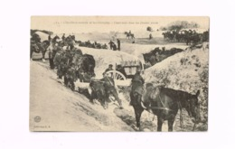 L'Artillerie Montée Et Les Obstacles.Demi-tour Dans Un Chemin étroit. - Weltkrieg 1914-18