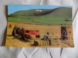 VINTAGE UK: WILTSHIRE WESTBURY White Horse Colour Tractor - Inghilterra