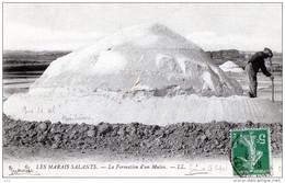 44 - GUERANDE - Marais Salants - Formation D'un Mulon - Guérande