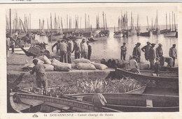 DOUARNENEZ : Canot Chargé De Thons - Vers 1925 - Douarnenez