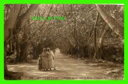 ALGER, ALGÉRIE - FEMMES ARABES DANS LES JARDINS D'ESSAI D'ALGER - LL. - ÉCRITE EN 1913 - - Algérie