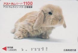 Carte Japon - ANIMAL - LAPIN 1100 - RABBIT Japan Prepaid Card - Kaninchen Conejo Coniglio - FR 253 - Konijnen