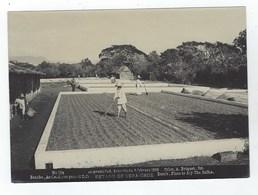 Estado De VERA-CRUZ - Rancho - Asoleaderos Para El Cafe - Foto A. Briquet 1896 - N° 194 - Fotos