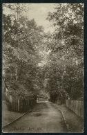 RB 1224 - 1906 Postcard - Batts Hill Redhill Surrey - Surrey