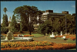 RB 1224 - New Zealand Postcard - Fountain At Albert Park Auckland - New Zealand