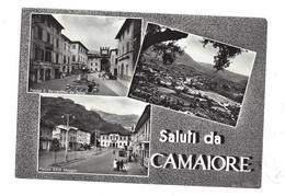 CARTOLINA DI CAMAIORE - LUCCA -  1 - Lucca