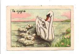 CHROMOS BON POINT - ANIMAUX - LE CYGNE - Chèques & Chèques De Voyage