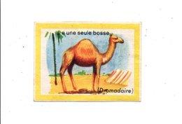 CHROMOS BON POINT - ANIMAUX - LE DROMADAIRE - Chèques & Chèques De Voyage