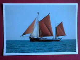 Carte Postale -Voilier - Fleur De Lampaul - Velieri