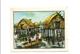 CHROMOS BON POINT - HABITAT HUMAIN - VILLAGE LACUSTRE - Chèques & Chèques De Voyage
