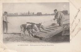 27 Vieux Port. Embarquement Des Veaux En Basse Seine - France