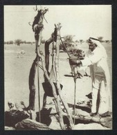 Abu Dhabi Old Black & White Picture On Calendar Card 2002 - Dubai
