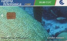 TARJETA TELEFONICA DE CUBA (CORALES MARINOS) (328) - Cuba