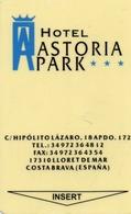KEY HOTEL CARD-ESPANA-COSTABRAVA - Chiavi Elettroniche Di Alberghi