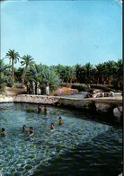 ! Moderne Ansichtskarte Mineral Water Springs In Alhasa, Saudi Arabia - Arabia Saudita