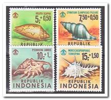 Indonesië 1969, Postfris MNH, Sea Snails ( Tropical Gum, See Scan ) - Indonesië