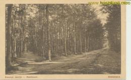 Ginneken - Eeuwige Laantje - Mastbosch (AA2-585 - Netherlands