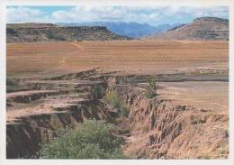 Lesotho Uncirculated Postcard (ask For Verso / Demander Le Verso) - Lesotho