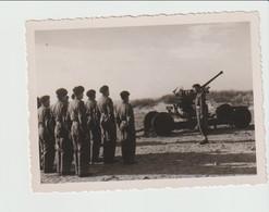 Photo Militaire Soldat à Indentifier Lombartzijde Lombartzyde Lombardzijde Lombardsijde Middelkerke - Krieg, Militär