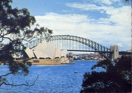 Sydney - Australia - The Sydney Opera House And Harbour - Bridge From Mrs Macquarue's Paint - Formato Grande Viaggiata – - Cartoline