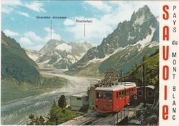 F73-031 LE TRAIN DE CHAMONIX - MONTENVERS, LA MER DE GLACE ET PAYSAGE ALPIN - Treinen