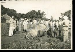 1946 ORIGINAL AMATEUR PHOTO FOTO HUNTER HIPPOPOTAMUS SALAMANGA MOZAMBIQUE MOÇAMBIQUE AFRICA AFRIQUE - Africa