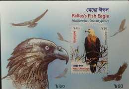 O) 2018 BANGLADESH, BIRDS OF PREY, HALIAEETUS LEUCORYPHUS -PALLAS'S FISH EAGLE, SOUVENIR MNH - Bangladesh