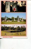 (201) Kingdom Of Tonga Postcard - Tonga