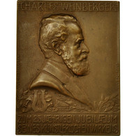 Allemagne, Médaille, Musique, Charles Weinberger, Vienne, 1913, SUP, Bronze - Allemagne