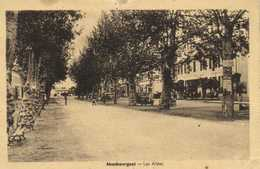 MAUBOURGUET  Les Allées RV  Beaux Timbres 1F +50C - Maubourguet