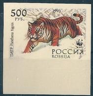 B2276 Russia Rossija Tiger 500 Rubel Colour Proof - 1992-.... Federación