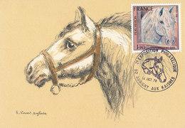 D34967 CARTE MAXIMUM CARD TRIPLE 1978 FRANCE - WHITE HORSE CHEVAL BLANC CP ORIGINAL - Horses