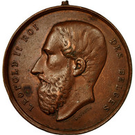 Belgique, Médaille, Leopold II, Concours De Bétail Gras, Bruxelles, 1884 - Belgique