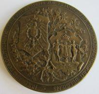 M05308 HULDIGUNG DER DEUTSCHENKOLONIE ANTWERPENS ZUR 75 Jahresfeier.. ARMOIRIES (84 Gr) Allégories - 1830-1905 Au Revers - Firma's