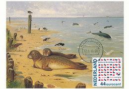 D34981 CARTE MAXIMUM CARD FD 2010 NETHERLANDS - WADDEN WORLD HERITAGE - SEAL - DETAIL ON STAMP CP ORIGINAL - Marine Mammals